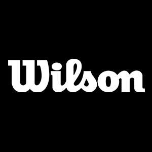 لوگو ویلسون wilson